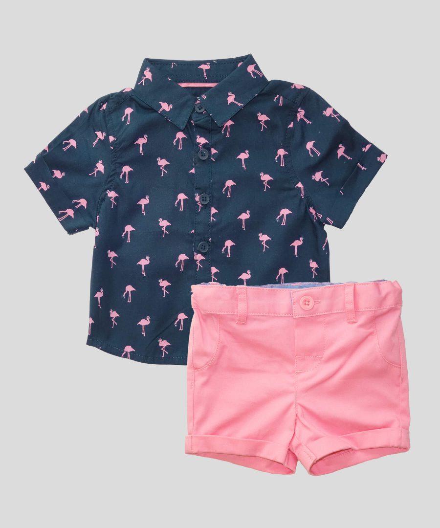 Бебешки и детски комплект с фламинго за момче