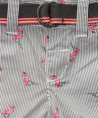 Къси панталонки с фламингота