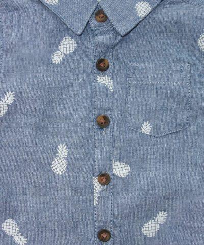 Риза с ананаси