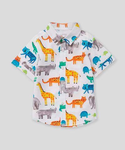 Риза сафари